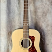 Guild Westerly Collection D-240E Limited