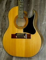 1971 Ralph Smith BW-18-P 18-String Cutaway $9995.