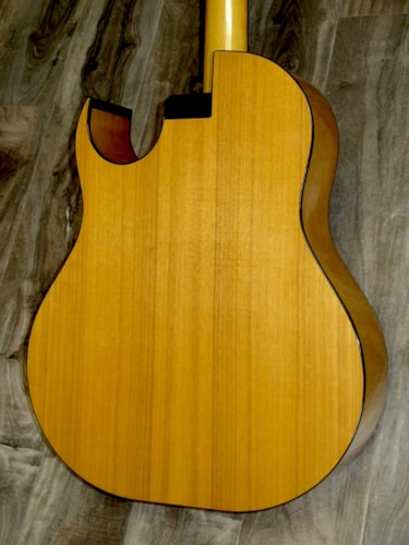 1971 Smith BW-18-P 18-String Cutaway