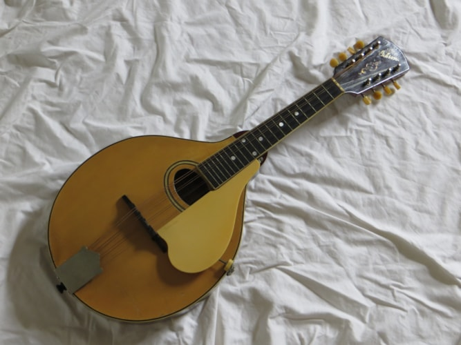 1918 Gibson A-3 White, Very Good, Original Hard