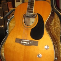 1969 FAME Small Bodied Acoustic