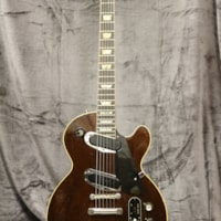1969 Gibson Les Paul Professional