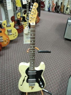 1973 Fender Telecaster Thinline
