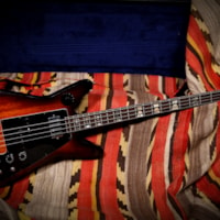 1979 Electra X-620 MPC Outlaws Bass