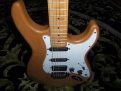 ~1998 Carvin Bolt Electric