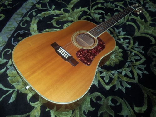 1989 Washburn D-25S-12N Natural