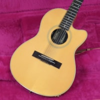 1990 Gibson Chet Atkins SST 12
