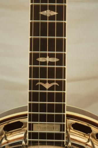 1994 Gibson RB250 5 string