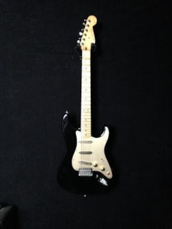 1999 Fender Scalloped Standard Stratocaster.