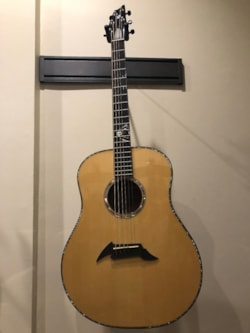 2000 Breedlove RD-20 Premier  First of only 10 built,