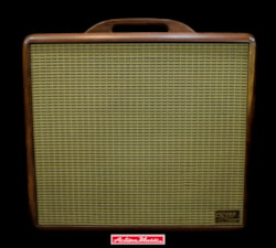 2001 Fender USA Blues Junior Chassis