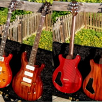 2003 Paul Reed Smith PRS 2 x 1 of a kind private stock