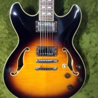 2004 Ibanez Artcore AS-193