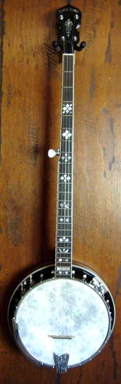 2005 Gold Tone OB250LN Long Neck Banjo