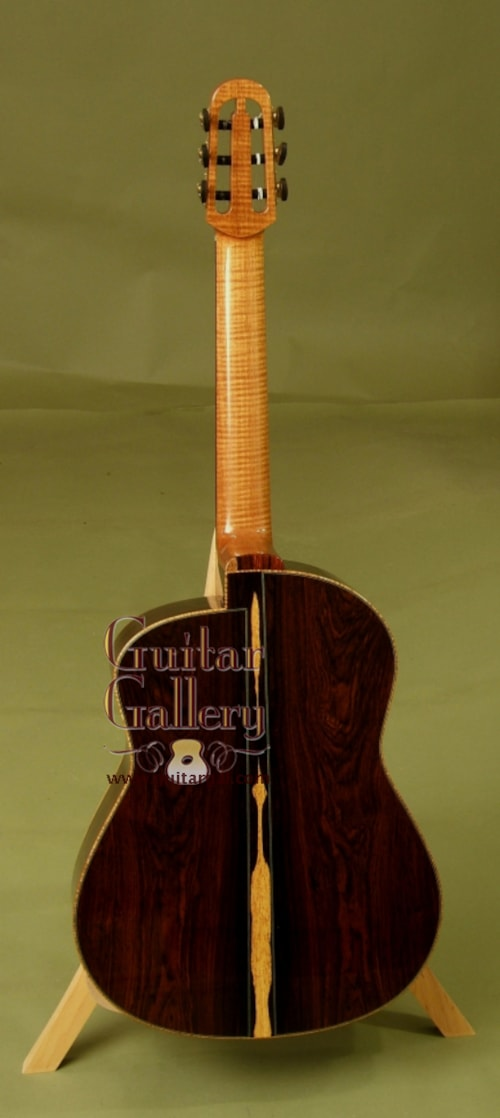 2006 Mcgill Picasso Collector S Series Cocobolo Gt Guitars
