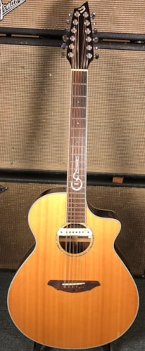2007 Breedlove AJ25/SR -12 Richard Gilewitz Signature Natural