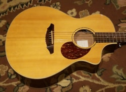 2010 Breedlove Passport Plus C250-SRe