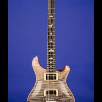 2010 Paul Reed Smith DG-S Private Stock 'Frostbite'