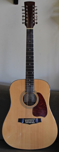 2012 Ibanez 12 string
