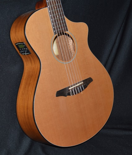 2014 Breedlove Passport® N250/C0e Natural, Excellent, GigBag, $395.00