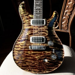 ~2015 Paul Reed Smith 2015 PRS Private Stock GRAPHITE Paul's Guitar! QUILT/African Ebony/Olive Paul Reed Smith