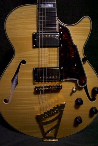 2016 D'Angelico EX-SS 15080351 Amber Blonde, Brand New, Original Hard, Call For Price!