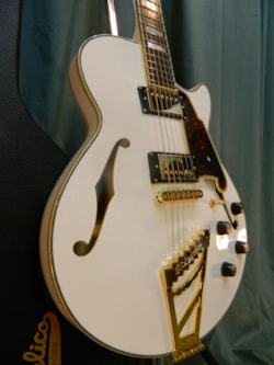 2016 D'Angelico Excel SS