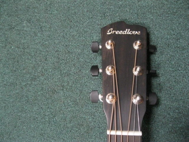 2017 Breedlove Oregon Dreadnaught Natural, Brand New, Original Hard