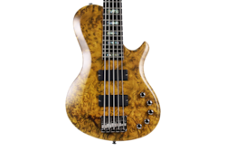 2018 10S BH Camphor Burl&5P Flame Maple 5 String Electric Guitar Bass