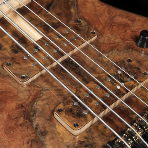 2018 F Bass BN5 5-String Bass Burled Walnut Top 2018 NAMM Display