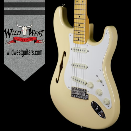 2018 Fender 2018 Fender USA Eric Johnson Signature Stratocaster Thinline Semi-Hollow Body Maple Neck