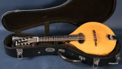 2019 Collings MTO