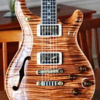 2019 Paul Reed Smith McCarty 594 Semi Hollow Ltd Artist
