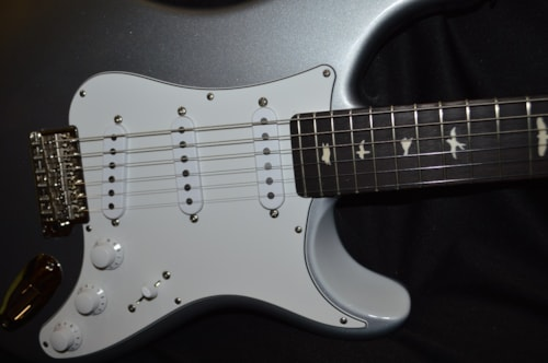 2019 Paul Reed Smith Silver Sky Tungsten