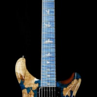 2019 PRS - Paul Reed Smith PRS Private Stock #8129 Custom 24 l Flame / Spalted Maple Flame Neck and Board Faded Aquamarine