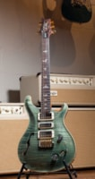 2019 PRS Special 22 Semi Hollow Limited Edition 10 Top - Trampas Green
