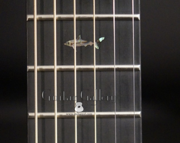2019 Rainsong BI-WS1000N2 Black Ice Guitar
