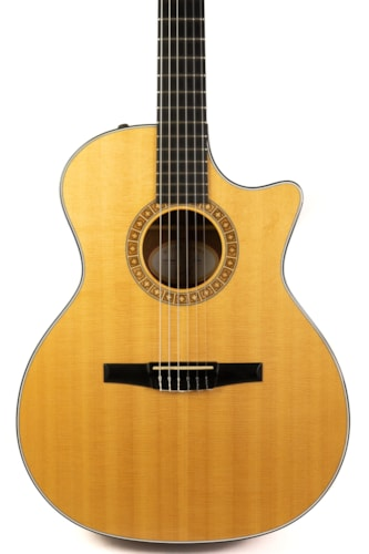 2010 Taylor NS34ce Natural