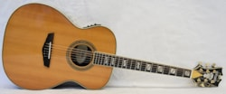 2020 D'Angelico Excel Tammany