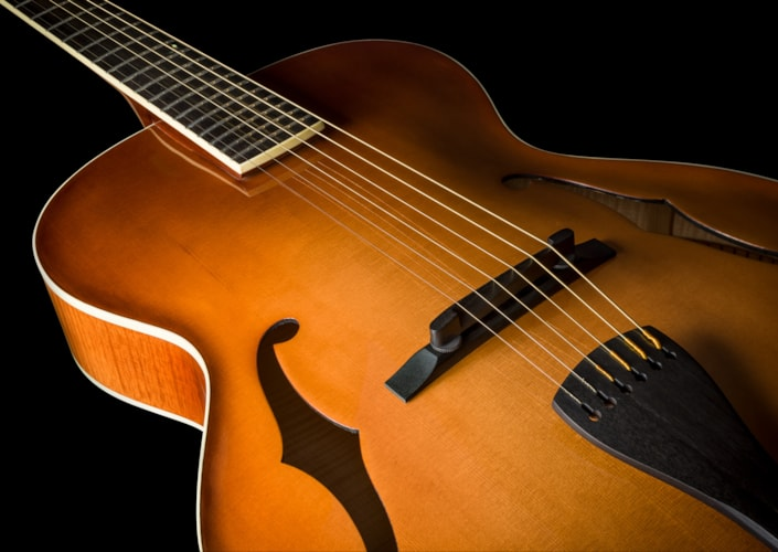 Benedetto Custom Archtop Brand New