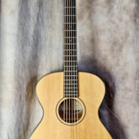 2019 Breedlove Discovery Concertina