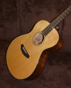 Breedlove Discovery Concet
