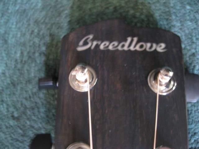 Breedlove Oregon Concertina E Natural Myrtlewood, Brand New, Original Hard