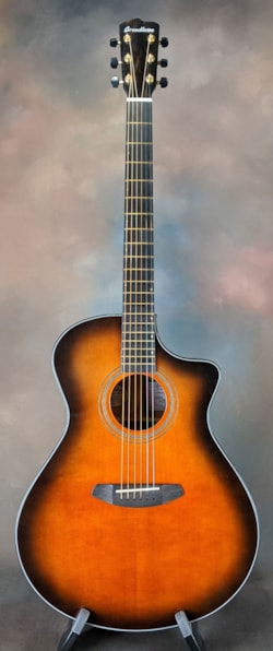 Breedlove Organic Collection Performer Concerto CE