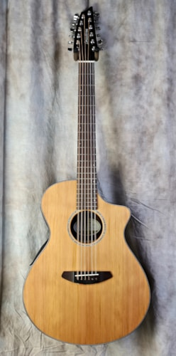 Breedlove Solo 12-String CE Natural, Brand New, Original Soft