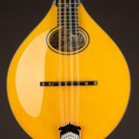 Collings MT2-O Oval Honey Amber