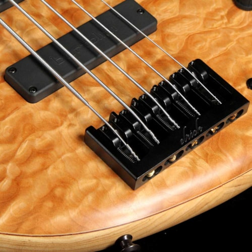 Elrick eVolution Gold Series 5-String Electric Bass Quilt Top Natural Brand New