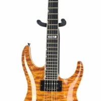 ESP Horizon Custom K Series Electric Guitar