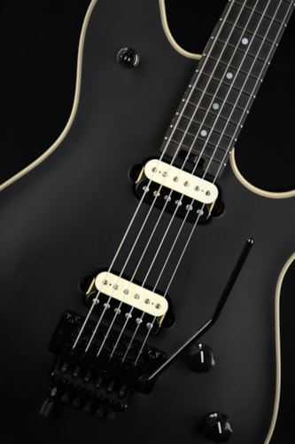 EVH Wolfgang USA Stealth Ebony Fingerboard - Stealth Black/B Stock