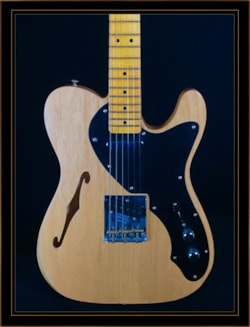Fender Custom Shop LTD Blackguard Thinline Tele
